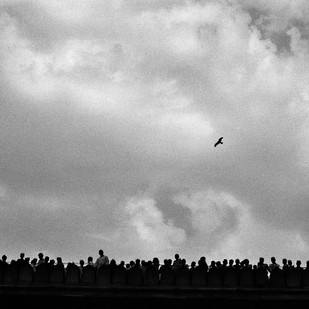 Flight Of Freedom 01 by Sandeep Biswas, Image Photography, Digital Print on Archival Paper, Gray color