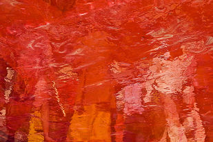 Colours Of Holi by Udit Kulshrestha, Image Photography, Digital Print on Canvas, Red color