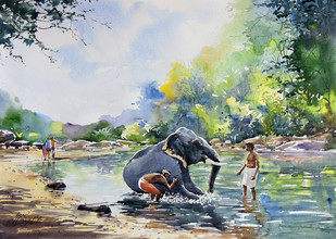 Elephant Bath by Sunil Linus De, Impressionism Painting, Watercolor on Paper, Green color