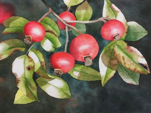 Rose Hips by Poulami Basu, Impressionism Painting, Watercolor on Paper, Gray color