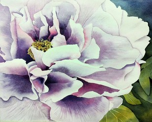 Not A Puny Peony by Poulami Basu, Impressionism Painting, Watercolor on Paper, Gray color