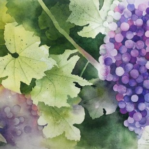 Grapes on Vine by Poulami Basu, Impressionism Painting, Watercolor on Paper, Green color
