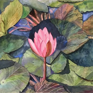 waterlily by Priti Dhongadi, Impressionism Painting, Watercolor on Paper, Brown color