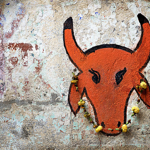 Red Bull by Sanjay Nanda, Image Photograph, Digital Print on Canvas, Brown color