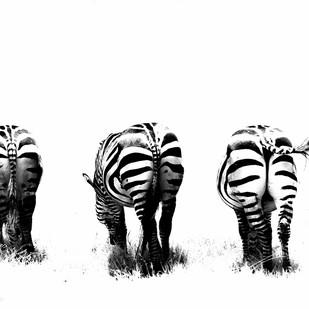 Bottoms Up by Runjiv J. Kapur, Image Photograph, Digital Print on Canvas, White color