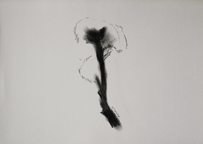 Drawing 4 by Shalaka Deshmukh, Impressionism Drawing, Charcoal on Paper, Gray color