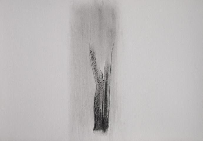 Drawing 5 by Shalaka Deshmukh, Abstract Drawing, Charcoal on Paper, Gray color