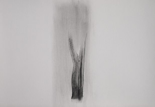 Drawing 5 by Shalaka Deshmukh, Abstract Drawing, Charcoal on Paper, Gray color