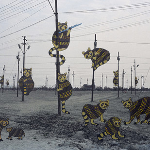 Racoons On Trees by Mansi Shah - Vishal Mehta, Digital Digital Art, Digital Print on Archival Paper, Gray color