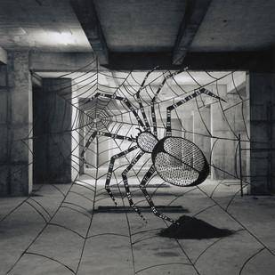 House Spiders by Mansi Shah - Vishal Mehta, Digital Digital Art, Digital Print on Archival Paper, Gray color