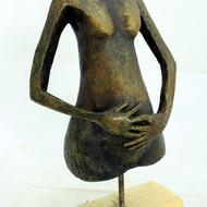 Pregnant lady 3