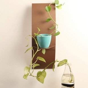 Designmint C Shelf Wall Decor By Designmint