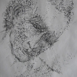 Untitled by Akbar Padamsee, Impressionism Drawing, Ink on Paper, Gray color