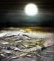 On a Moonlit Night by Gautam Chaturvedi, Digital Digital Art, Digital Print on Canvas, Gray color