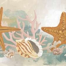 Marine Tableau II Digital Print by Vess, June Erica,Decorative