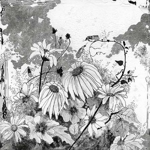 Iza's Garden I Digital Print by Blixt, Ingrid,Illustration