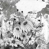 Iza's Garden I Digital Print by Blixt, Ingrid,Illustration