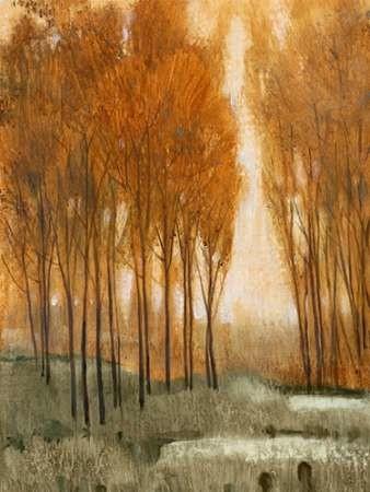 Golden Forest II Digital Print by OToole, Tim,Realism