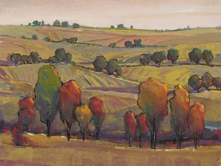 Rolling Hills I Digital Print by OToole, Tim,Impressionism
