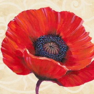 Red Poppy I Digital Print by OToole, Tim,Decorative
