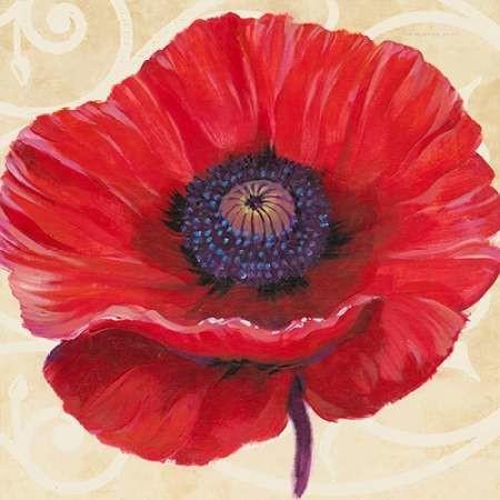 Red Poppy II Digital Print by OToole, Tim,Decorative