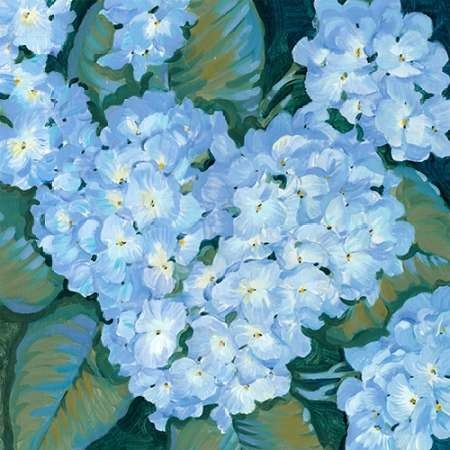 Blue Hydrangeas II Digital Print by OToole, Tim,Decorative