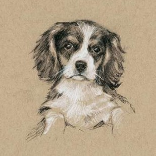 Breed Sketches III Digital Print by Harper, Ethan,Realism