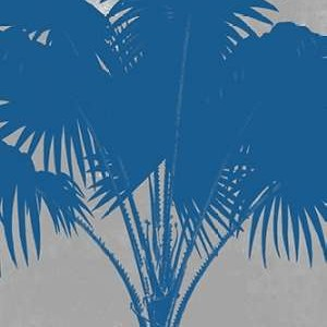 Chromatic Palms VI Digital Print by Goldberger, Jennifer,Decorative, Decorative