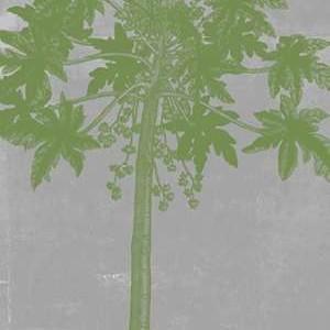 Chromatic Palms IX Digital Print by Goldberger, Jennifer,Decorative