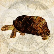 Steam Punk Turtle I Digital Print by Ilosky, Pam,Decorative