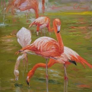 Flamingo I Digital Print by Larivey, Chuck,Impressionism