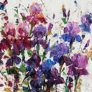 Iris Blooming I Digital Print by OToole, Tim,Impressionism
