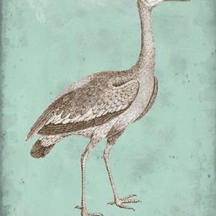 Sepia & Spa Heron I Digital Print by Vision Studio,Decorative
