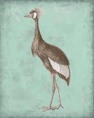 Sepia & Spa Heron II Digital Print by Vision Studio,Decorative