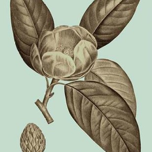 Flowering Trees VI Digital Print by Vision Studio,Decorative