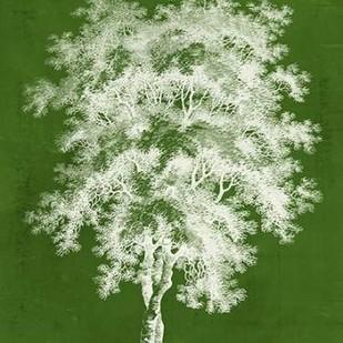 Modern Arbor III Digital Print by Vision Studio,Decorative