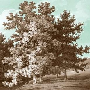 Serene Trees I Digital Print by Kennion, Edward,Realism