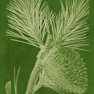 Modern Pine III Digital Print by Vision Studio,Decorative