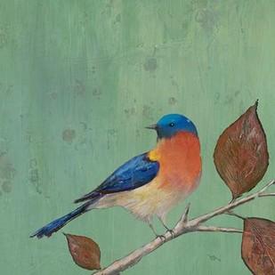 Resting Bird II Digital Print by Altug, Mehmet,Decorative