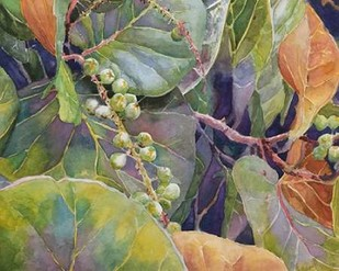 Sea Grapes II Digital Print by Fagan, Edie,Decorative