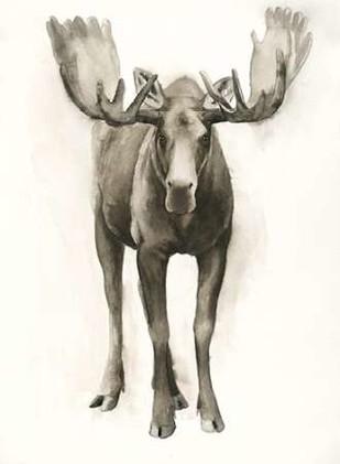 Majestic Wildlife I Digital Print by Popp, Grace,Realism