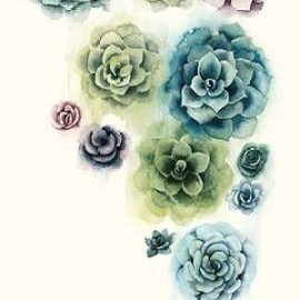 Succulent Cluster I Digital Print by Popp, Grace,Decorative