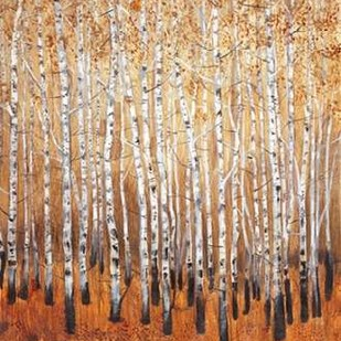 Sienna Birches I Digital Print by OToole, Tim,Impressionism