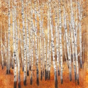 Sienna Birches II Digital Print by OToole, Tim,Impressionism