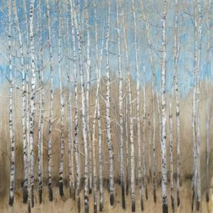 Dusty Blue Birches I Digital Print by OToole, Tim,Impressionism