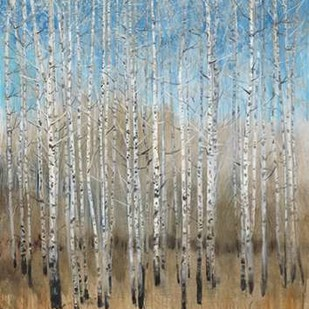 Dusty Blue Birches II Digital Print by OToole, Tim,Impressionism