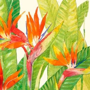 Watercolor Tropical Flowers IV Digital Print by OToole, Tim,Decorative