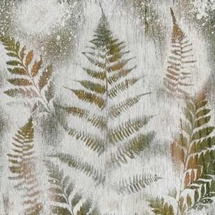 Shenandoah Grove II Digital Print by Ludwig, Alicia,Realism