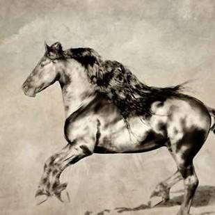Wind Blown Mane III Digital Print by PHBurchett,Realism