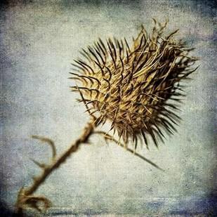 Grunge Remnants II Digital Print by Malek, Honey,Impressionism